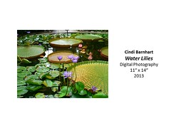 """Water Lilies • <a style=""""font-size:0.8em;"""" href=""""https://www.flickr.com/photos/124378531@N04/31178557705/"""" target=""""_blank"""">View on Flickr</a>"""