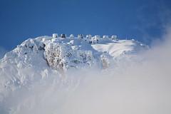 ART_9351m (MILESI FEDERICO) Tags: milesi milesifederico montagna montagne alpi altavallesusa alpicozie altavaldisusa visitpiedmont valsusa valdisusa valliolimpiche valledisusa nikon nikond7100 nital natura nature sigma150500 sigma piemonte piedmont paesaggio neve nat wild landscape snow europa europe autunno italy italia iamnikon inmontagna novembre 2016 d7100 dettagli dettaglio detail details