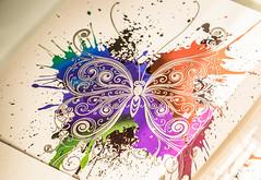 Butterfly (wigerl - herwig ster) Tags: bunt schmetterling carinthia soschn europa velden austria 2016 light krnten foto colourfull butterfly fujixt1 fuji sterreich geschft licht europe store vianello