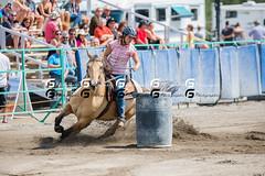 Gymkhana Falardeau22802 (Glenn Fullum) Tags: horse nikon barrels sigma full frame chevaux baril gymkhana 70200f28 d610 sigma70200 falardeau