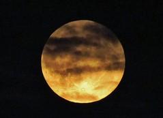 Moon covered by clouds (Elisa1880) Tags: moon netherlands clouds nederland wolken covered maan vierakker bedekt