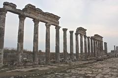 Columns with twisted fluting, Apamea, Syria (susiefleckney) Tags: apamea syria hama ghabplain seleucid roman byzantine arab ruins archaeology ancient fluting twistedfluting westernasia
