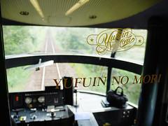 特急 ゆふいんの森 (Steve only) Tags: japan lumix g railway jr panasonic snaps kyushu 九州 vario m43 特急 1445mm f3556 yufuinnomori 由布院之森 14453556 ゆふいんの森 dmcgm1