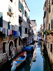 Venezia - Clotheslines (Martin M. Miles) Tags: venice italy clothesline clotheslines venezia veneto venetien