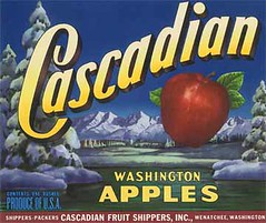 "Cascadian • <a style=""font-size:0.8em;"" href=""http://www.flickr.com/photos/136320455@N08/21480312541/"" target=""_blank"">View on Flickr</a>"
