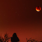Watching the Blood Moon thumbnail