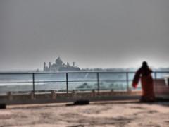Taj Mahal from Agra Fort