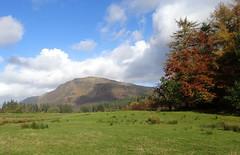 Strath Eachaig (Russardo) Tags: scotland argyll cowal strath eachaig stratheck