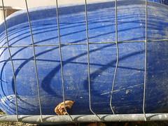 DMC-G2 - P1700098 - 2013-10-28 15-21-44 Narrenturm construction site baustelle altes AKH pasin Wien Alsergrund (archive_diary) Tags: vienna wien shadow sky reflection work fence grid graffiti austria mirror österreich waiting fenster probe himmel gas baustelle schild dash frame arbeit schatten spiegelung hörsaal glas imprint rahmen renovierung gitter zeichnung warten splitter paradies narrenturm ziegel strick woyzeck 49er vergittert zigarettenstummel paradeiser biedeckel impressio bindestrich foolstower tschik paradiesäpfel aufgegraben strasenbahnhaltestelle instandhaltung baustellengitter ingridhedbavny gedankenstrich ziegelsplitter
