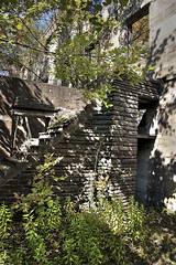 Autumn Ruins (Litratistica Images NYC) Tags: camera nyc newyorkcity autumn trees usa house newyork leaves outdoors ruins steps streetphotography canoneos20d oldbuilding canon28135mm streetphotographer earldolphy litratisticaimages cherrydolphy