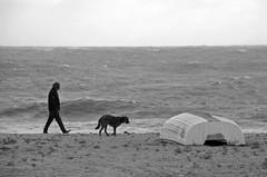 paseando (Cazador de imgenes) Tags: street autumn sea espaa dog man beach mar photo spain nikon barca foto streetphotography 15 playa andalucia perro otoo streetphoto andalusia andalusien almeria almera hombre spagna spanje andalousie spania 2015 carboneras spange photostreet   d7000