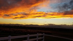 October 26, 2015 - A beautiful sunset in Broomfield. (David Canfield)