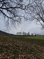 St. Andr (inge.sader) Tags: landscape landschaft trentino sdtirol altoadige brixen bressanone standr eisacktal