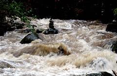 Rushing water (kkdemien) Tags: rapids olsoncreek