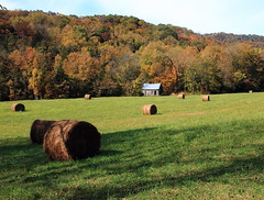 Autumn Color and Haybales, Old Clark Homesite at Entrance to Lost Valley - Northwest Arkansas (danjdavis) Tags: fallcolor oldhouse arkansas hay oldbuilding haybales abandonedbuilding autumncolor buffalonationalriver historicbuilding lostvalley clarkhomesite