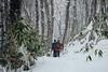 Snowshoeing near Nakayama Pass (Nakayama-toge) in November (Hokkaido, Japan) (Robert Thomson) Tags: november snow fall japan snowshoe sapporo hokkaido niseko daytrip newsnow