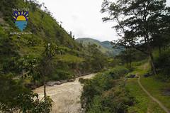 nurkowanie-travel-pl-117.jpg (www.nurkowanie.travel.pl) Tags: indonesia places papua baliem