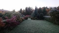 Frost om morgenen (Martin Ystenes - hei.cc) Tags: trondheim norway frost