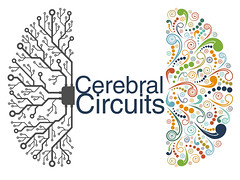 Cerebral Circuits (Lex Photographic) Tags: analogue synths musicians earlyintervention brainsize development childdevelopment