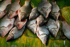 fish (*Kicki*) Tags: fish market inle inlelake inlaylake inlay shanstate myanmar burma food eyes palmleaf display somethingfishy marketday