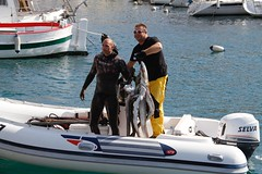 Pirano - 08 (Cristiano De March) Tags: pesca pesci pirano slovenia mare cristianodemarch barche