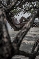 DSC_0492 (Kawikart) Tags: gaudy utila modeling beach blackandwhite blancoynegro monochrome tree trees