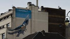 Bruxelles. Sur les murs (beatrice.boutetdemvl) Tags: bruxelles brussels peinture murale painting walls oiseau bird