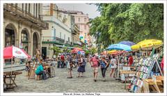 Mercadillo de libros. Plaza de Armas de la Habana Vieja. Cuba (Jos Mara Gmez de Salazar) Tags: cuba habana lahabana habanavieja calle mercadillo libros havana plazadearmas plaza square