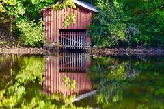 Darn Duck!!!! (I'magrandma) Tags: boathouse alabama drought daytripping desotafalls lake duck ripples reflections
