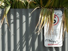 Palm Says Standing Allowed (mikecogh) Tags: glenelg palm fence sign hidden