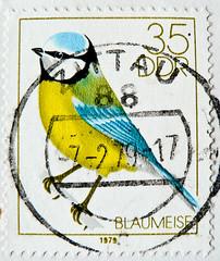 great stamp DDR 35pf Eurasian blue tit (Blaumeise, Cyanistes caeruleus, 蓝山雀, Plavček, herrerillo común, Mésange bleue, cinciarella, kék cinege, Обыкнове́нная лазо́ревка, Blåmes, Mavi baştankara) GDR Deutsche Demokratische Republik pullari ГДР марки 東德 (stampolina, thx for sending stamps! :)) Tags: ddr gdr deutschedemokratischerepublik germany easterngermany stamps stamp 切手 briefmarke briefmarken スタンプ postzegel zegel zegels марки टिकटों แสตมป์ znaczki 우표 frimærker frimärken frimerker 邮票 طوابع bollo francobollo francobolli bolli postes timbres sello sellos selo selos razítka γραμματόσημα bélyegek markica antspaudai маркица pulları tem perangko timbru eurasianbluetit blaumeise cyanistescaeruleus 蓝山雀 plavček herrerillocomún mésangebleue cinciarella kékcinege обыкнове́ннаялазо́ревка blåmes mavibaştankara
