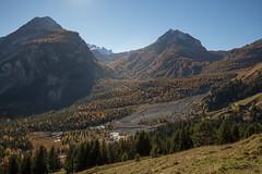 Bergsturtz (Sven Vietmeier) Tags: automne derborence lärche mélèzes rando schweiz suisse switzerland valais wallis wanderung randonnée lã¤rche mã©lã¨zes randonnã©e