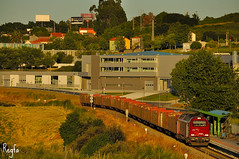 A Corua (***REGFA***) Tags: takargo comsa adif elvia eucalipto portugal celbi madera arbol ciudad tren comboio mercadoria 6003 euro4000 436003