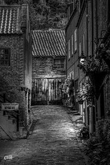 Black Horse Yard. Whitby. (Distinctive Digital) Tags: alleyway autumntime blackandwhite cobbles cottage courtyard england exterior flowers houses lamp morning northyorkshire photoshopprocessed portraitorientation urbanphotgraphy vignette whitby