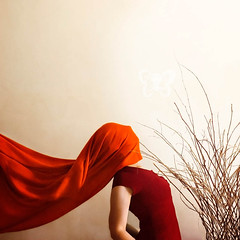 Sticks (hopelightimages) Tags: conceptual conceptualphotography sticksandstones sticks indoor orange red woman whitewall