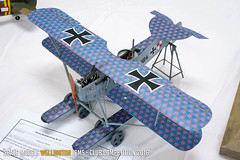 Hansa-Brandenburg W.12 - Tish Glasson