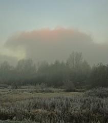 Lifting (Bricheno) Tags: dalmarnock bricheno glasgow fog frost scotland szkocja scozia scoia schottland cosse escocia esccia    wasteland
