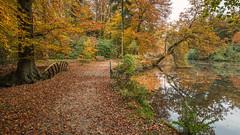 Autumn Walk in Beekhuizen. (wimzilver) Tags: wimboon wimzilver canon herfst beekhuizen canonef1635mmf4lisusm canoneos5dmarkiii