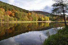L'automne dans son reflet (Excalibur67) Tags: nikon d750 sigma 24105f4dgoshsma paysage landscape reflexion reflets automne autumn arbres trees forest foréts eaux étangs vosgesdunord globalvision