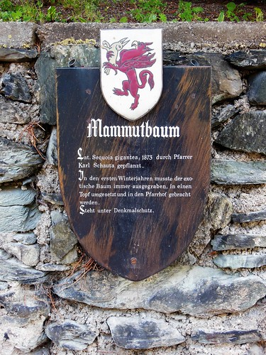 NÖ 2651 Reichenau an der Rax