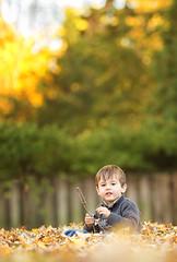 Fall Days (DanaZarzycki) Tags: autumn child danarosephotography detroitfamilyphotographer fall michiganfamilyphotographer metrodetroitphotographer outdoor boy fun mtz play