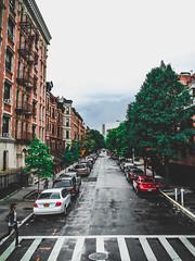 Harlem (zooksalmighty) Tags: nyc ny newyork newyorkcity eastcoast manhattan harlem crosswalk crossthestreet walk street streetphotography gadzooks zachmcminimy zackdeschain fort fortblog gadzooksphotography zooksalmighty