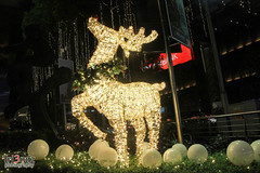 271116 -Orchard Road Christmas Lightup-8496 (frenz_ken) Tags: christmaslightup 2016 orchardroad singapore christmas singaporeanchristmas singaporeshoppingdistrict paragon