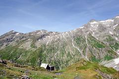 greina_2015-07-25_26_093 (coyote-agile) Tags: mountains schweiz switzerland tessin ticino suisse hiking htte val wanderung randonne 2015 grisons scaletta greina hochebene blenio plaun