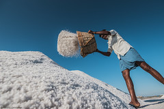 The Salt Factory (anandgovindan) Tags: street travel blue sea portrait sky people stilllife india white nature field work canon skyscape bucket still crystals action fineart ngc madras salt harvest culture drop tokina adobe freeze saltpond labour production worker tradition agriculture chennai hardwork journalism throw tamilnadu slog pondicherry southindia evaporation labourer lightroom lowangle twop difficulty crystalline saltpan cwc nacl seawater sodiumchloride hardship workship saltfield marakkanam saltevaporationpond marakanam 1116mm nammachennai tokina1116mm canon600d chennaiweekendclickers mychennai cwc478 anandgoviphotography anandgovindan