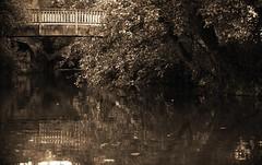 DSC_6037_editado-2 (adrizufe) Tags: bridge verde green puente nikon durango basquecountry reflejos nikonstunninggallery d7000 maariaerreka adrizufe
