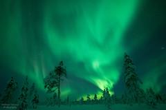 (tiensuuandreas) Tags: sky nature night stars landscape lights aurora nightsky northern auroraborealis borealis astrophotograpghy