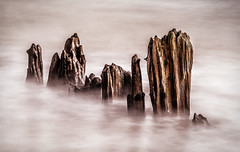 Remains (framboise_sjb) Tags: wood longexposure sea abstract zeiss landscape wooden suffolk long exposure moody decay dramatic erosion northsea southwold atmospheric eastanglia walberswick carlzeiss 2015 landscapephotography suffolkcoast zeissdistagon zeissdistagon18mm zeissdistagon3518mm