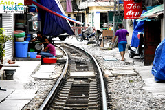 Binario Hanoi (Wronny) Tags: train funny transport railway trains vietnam ha transports hanoi railways treno divertenti noi divertente ferrovia binari treni ferrovie binario
