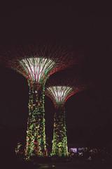 Gardens by the bay (bortescristian) Tags: park city trip holiday gardens by skyline marina canon garden photography bay singapore di february sands parc cristian singapur metropol taman singapura marinabay  2015          bortes   bortescristian cristianbortes     pesisiran huyun                singapr     bnhi wn